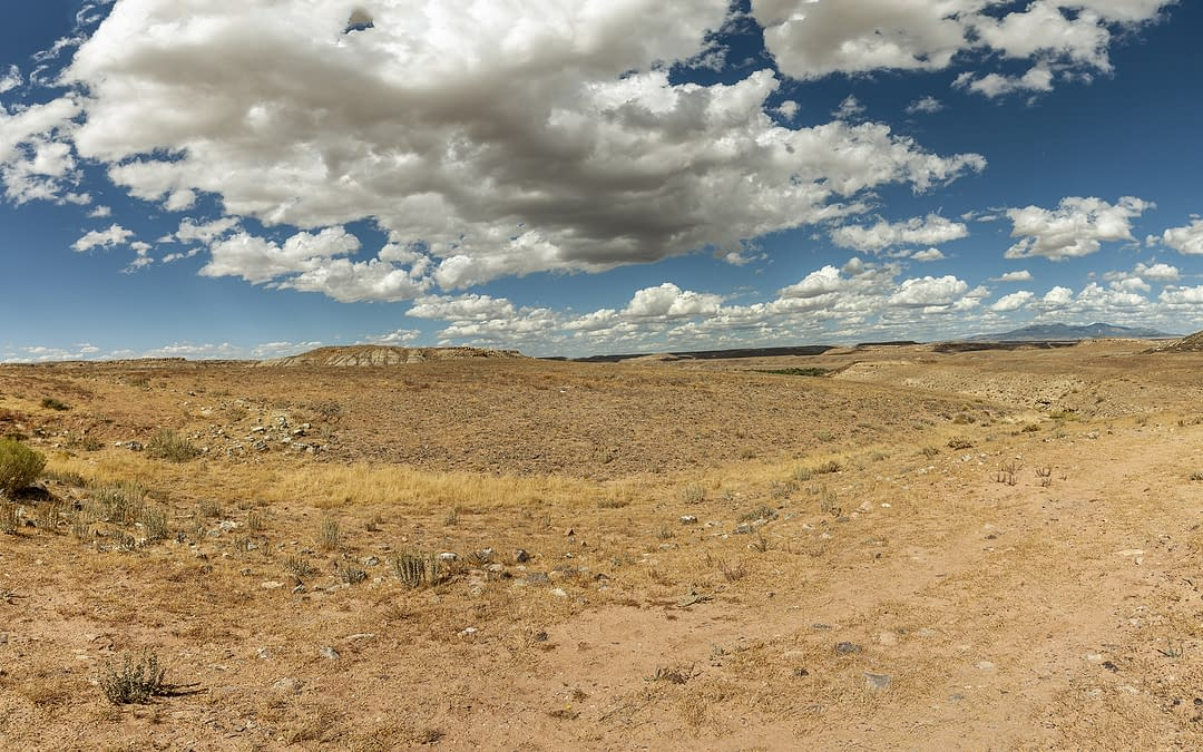 New Mexico Halts use of Fresh Water for Oil & Gas Operations